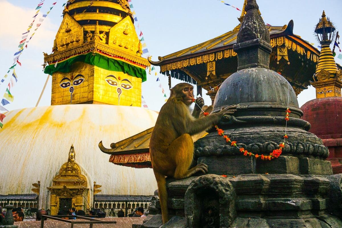 Kathmandu: a lesson in Buddhism